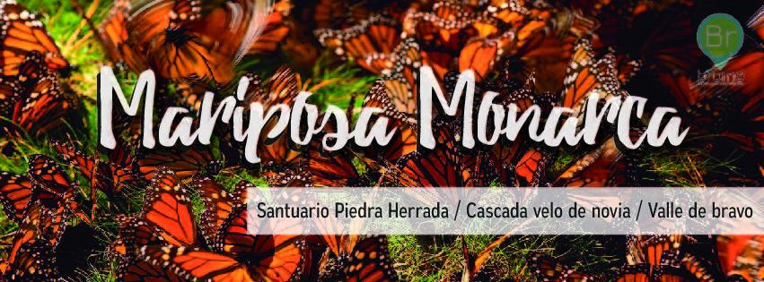 mariposamonarcaportada-01