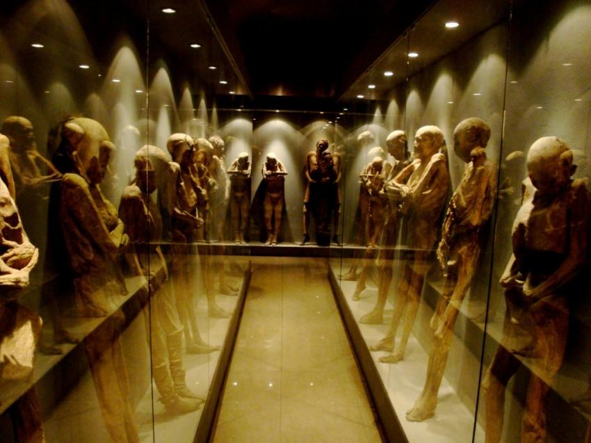 museomomias1-850x637