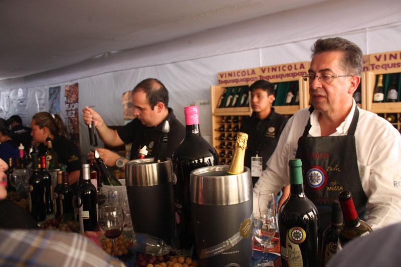 100-vinosmexicanos03